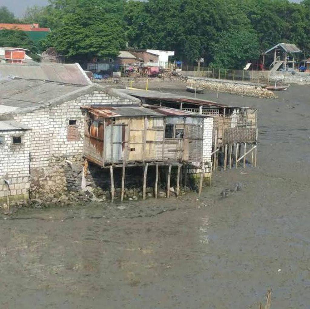 Tangkal Banjir Rob, Kota Surabaya Bangun Tanggul Laut Setinggi 2 Meter