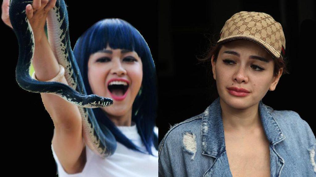 Dilaporkan Balik Julia Perez, Nikita Mirzani Tak Peduli