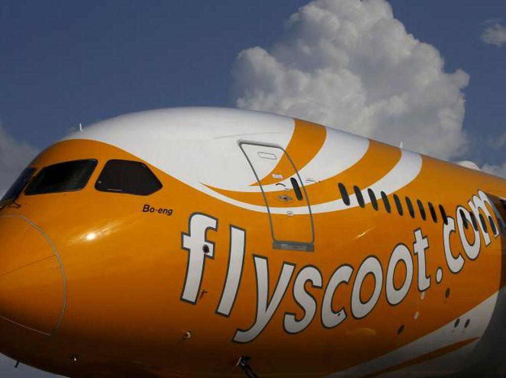 Buka Rute 4 Kota Indonesia ke Berlin, Scoot Airlines Tebar Promo