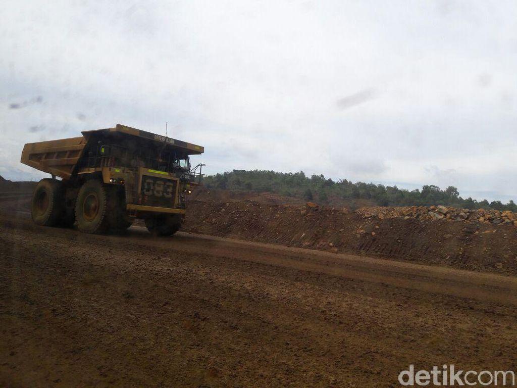 BUMN dan BUMD Rebutan Kelola Blok Tambang Nikel di Morowali