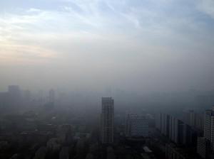 Kota Ini Larang Penggunaan Mobil Diesel