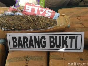 Bawa 30 Kg Ganja di Kotak Buah, Pelajar Aceh Dibekuk di Medan