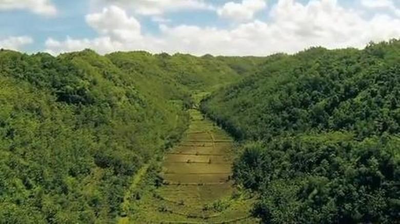 Foto: Kawasan Gunung Sewu terlihat dari atas (Youtube)