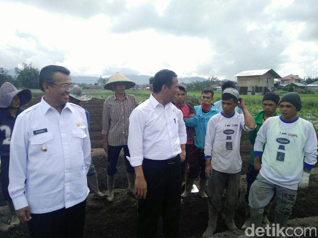 Mentan Minta Bawang di Sumatera Barat Jangan Dikirim ke Jawa