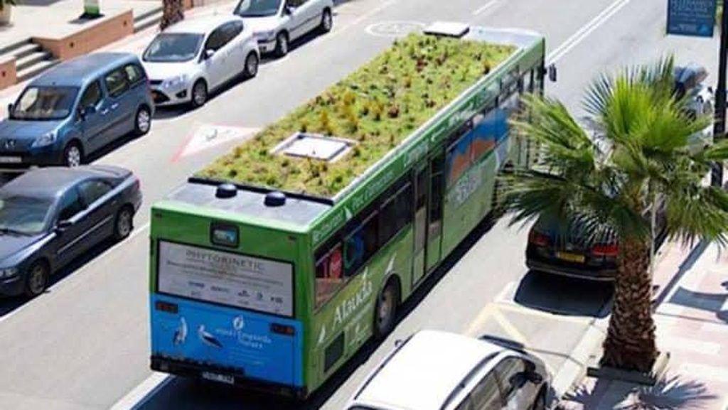 Serap CO2, Bus Ini Dipasangi Tanaman di Atapnya