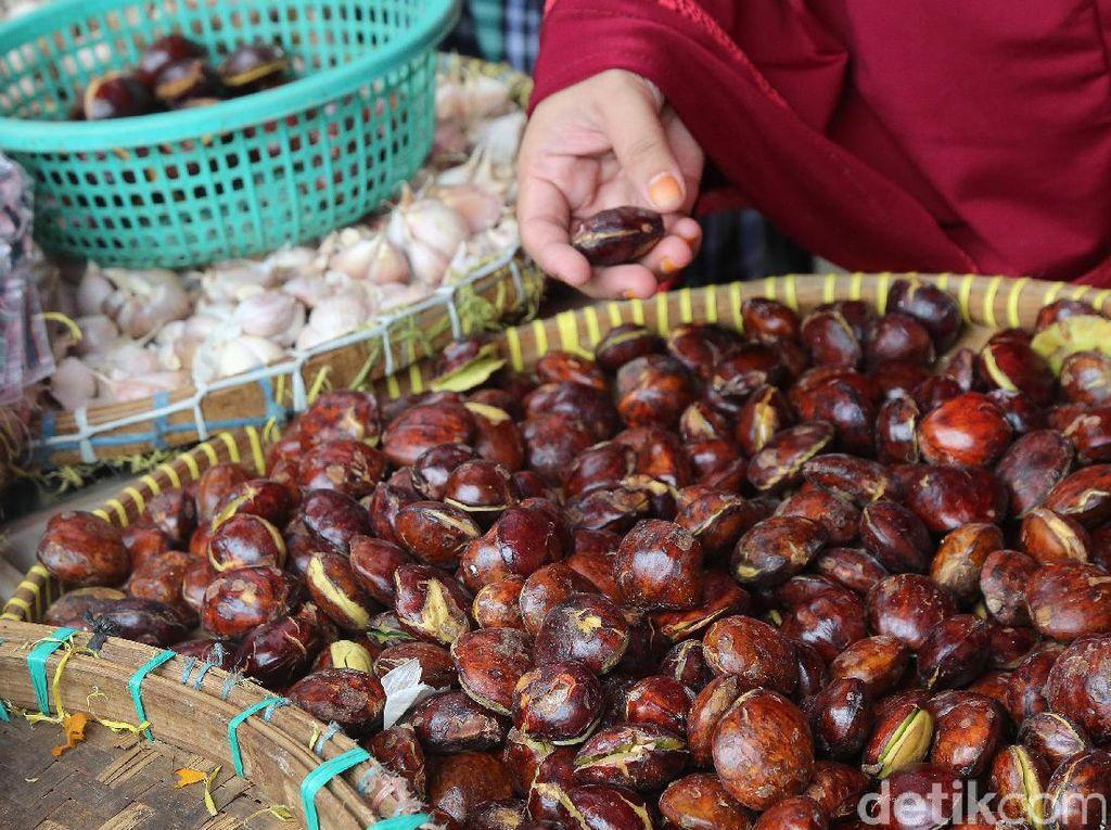 Redam Laju Inflasi, Pemprov Banten Mau Tanam Jengkol