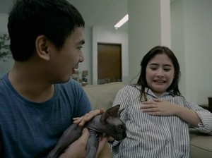Fobia, Prilly Jawab Tantangan Gendong Kucing