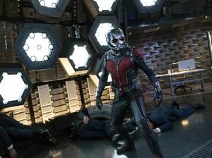 Sekuel Ant-Man, Paul Rudd Tak Hanya Sekadar Bisa Membesar dan Mengecil