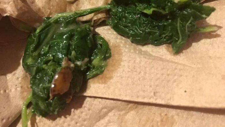 Penjelasan Holycow! soal Serangga di Makanan Pesanan Vyna