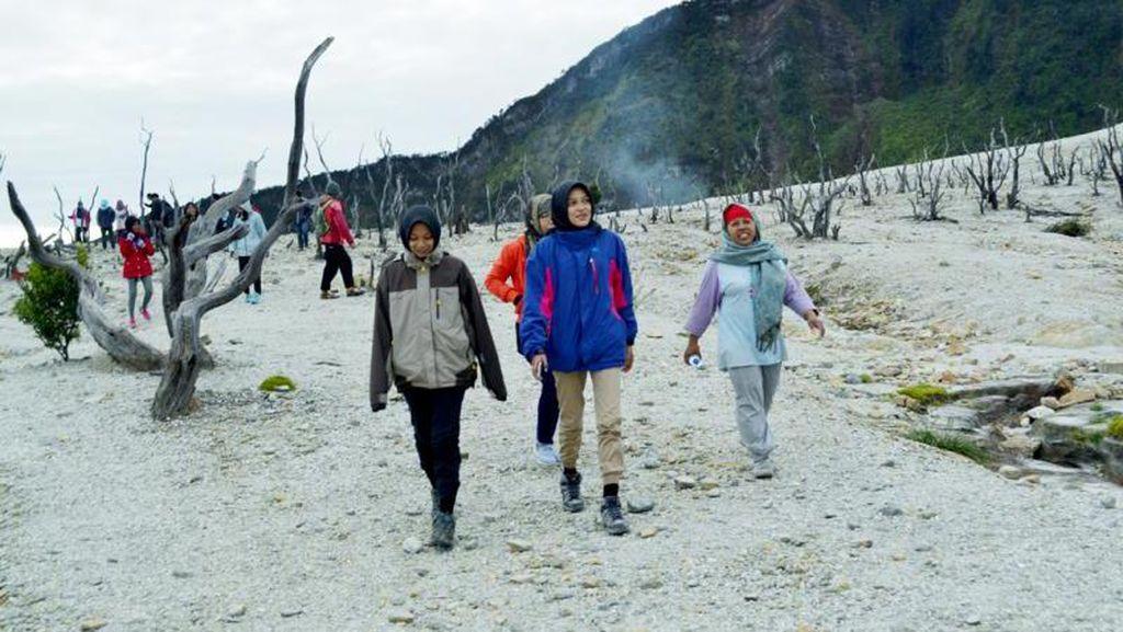 Eksotisnya Hutan Mati Gunung Papandayan