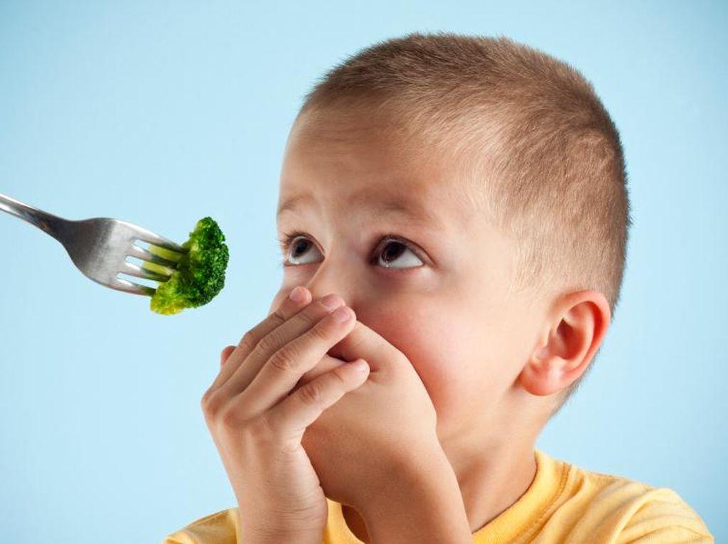Anak Selalu Rewel Saat Makan? Coba Siasati dengan Cara Ini