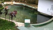 Satiri Ingin Sumur Keramat di Beji Diakui Sebagai Cagar Budaya