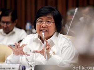 Menteri LHK: Waspada Kebakaran Hutan di Agustus-September 2017