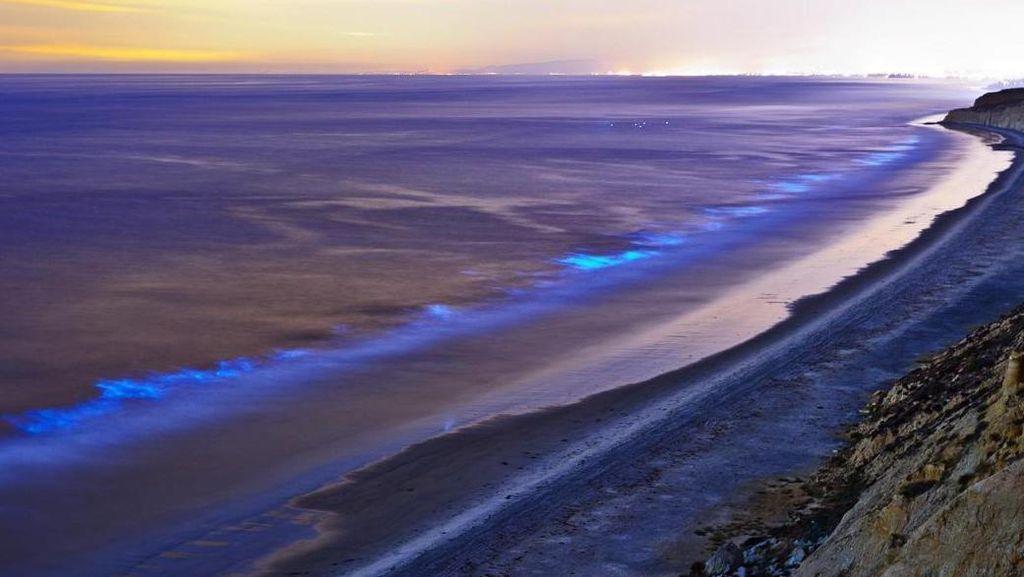 Luar Biasa Indah, Ada Lautan Bercahaya di AS