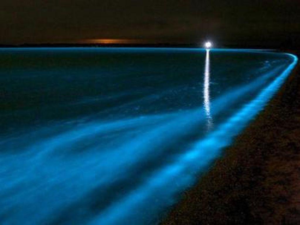 Ketika Laut Pantai Selatan Jawa Glowing Bercahaya