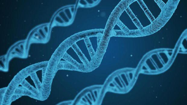 DNA Simpan Jejak Sejarah Manusia Sejak 180 Ribu Tahun Lalu