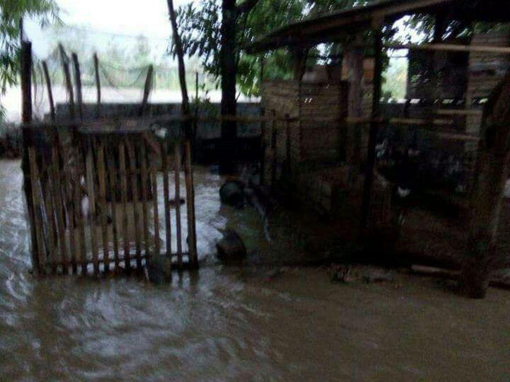 Banjir di Kabupaten Kuningan, Hewan Ternak Terbawa Arus Sungai