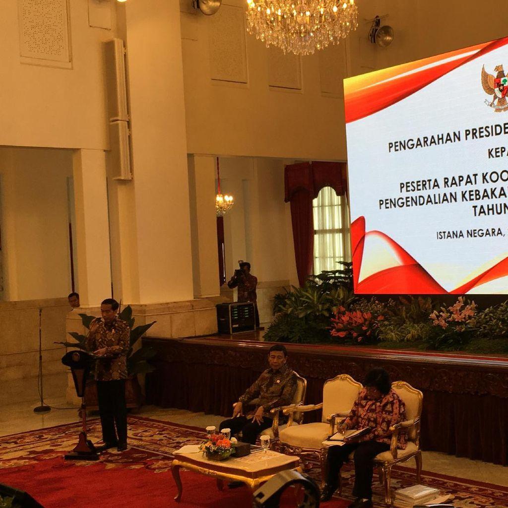 Jokowi Berharap Kebakaran Hutan dan Lahan di 2017 Menurun Drastis