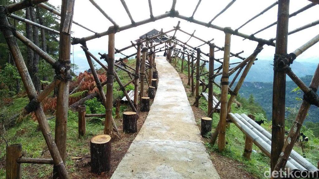 Satu Lagi Spot Instagenic di Toraja