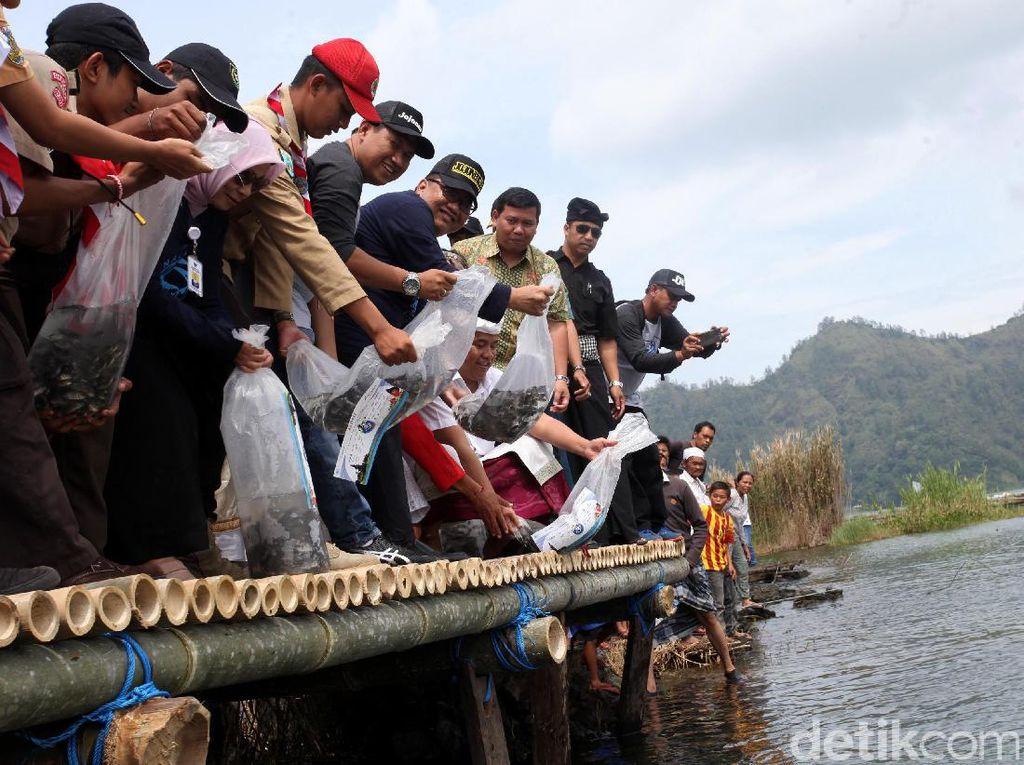 Menkop Tebar Benih Ikan di Danau Batur Bali