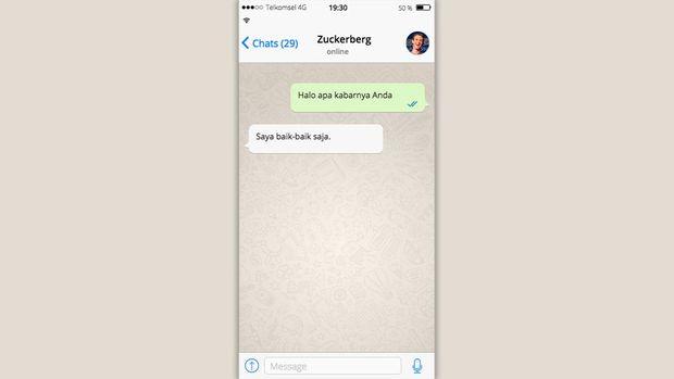 Tampilan Whatsapp Palsu
