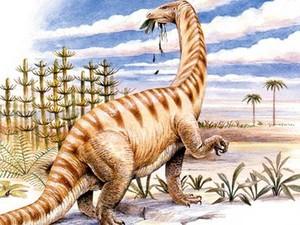 Temuan Menakjubkan! Protein Dinosaurus Berusia 195 Juta Tahun