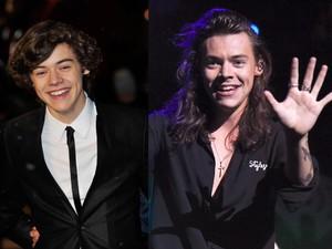 <i>From 16 to 23</i>, Perjalanan Harry Styles