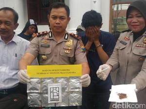 Polisi Ungkap Peredaran Tembakau Sintetis Berlogo Gajah
