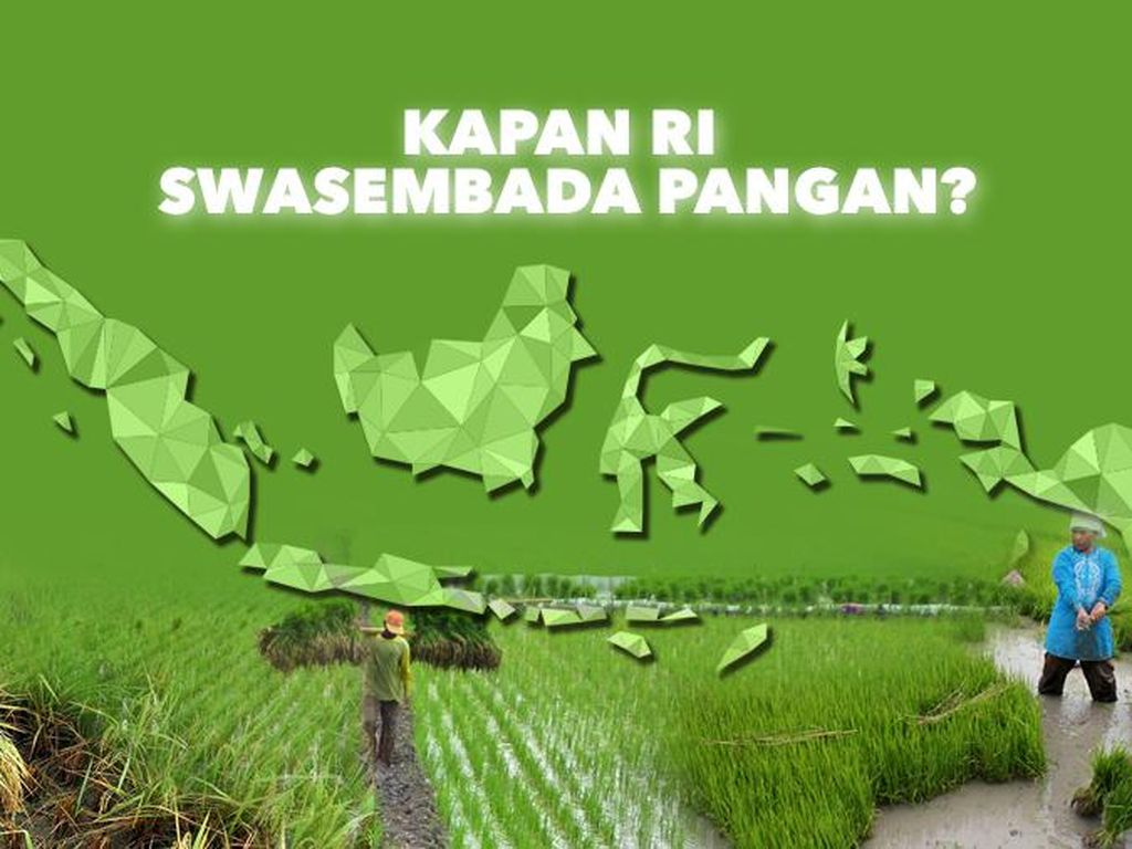 Janji Jokowi Swasembada Pangan dalam  3 Tahun, Apa Hasilnya?