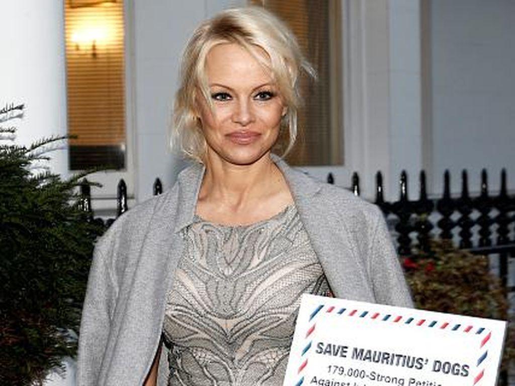 Dikabarkan Pacaran dengan Founder WikiLeaks, Ini Kata Pamela Anderson