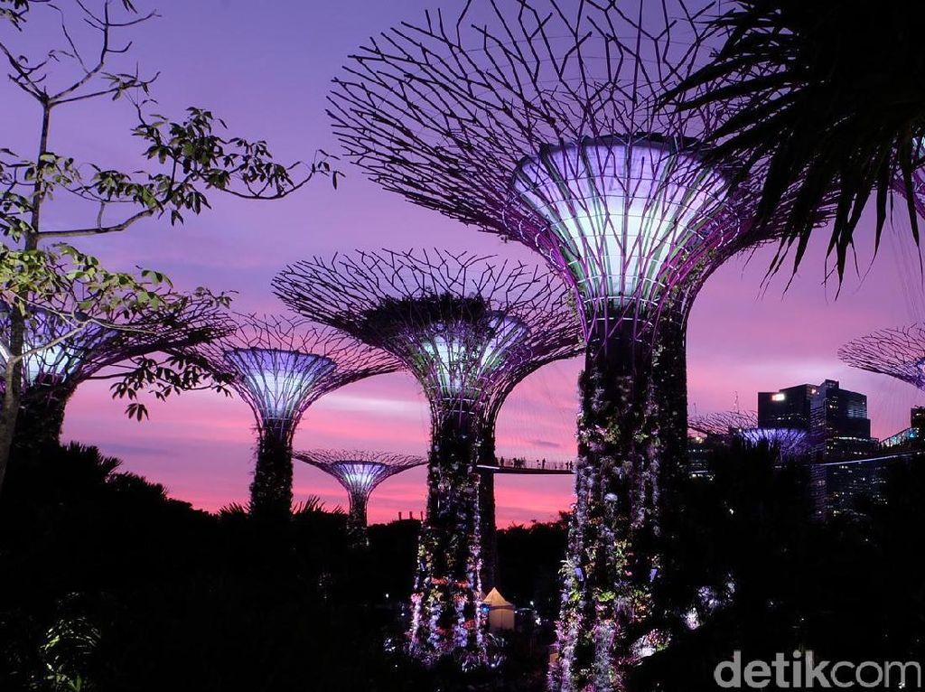 Megahnya Gardens by the Bay, Tempat Syuting Crazy Rich Asians