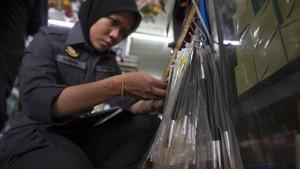 Kuas Bulu Babi yang Berlabel Halal Disita di Malaysia