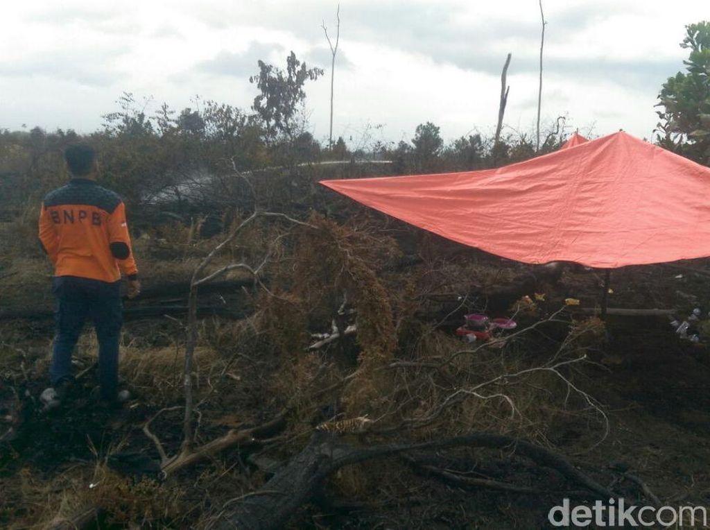 Ratusan Hektare Lahan Terbakar, Pemprov Riau Tetapkan Siaga Darurat