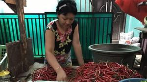 Musim Hujan, Cabai Rawit Merah Bertahan Rp 150.000/Kg