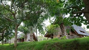 Biar Makin Cantik, Vila Wisata Osing Banyuwangi Diambil Alih Swasta