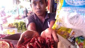 Cabai China Masuk Pasar Trenggalek dan Tulungagung