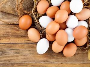Ini 10 Mitos Aneh Terkait Roti, Kulit Telur hingga Cabe (1)