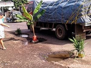 Warga Cibadak Sukabumi Tanam Pohon Pisang di Jalan Nasional