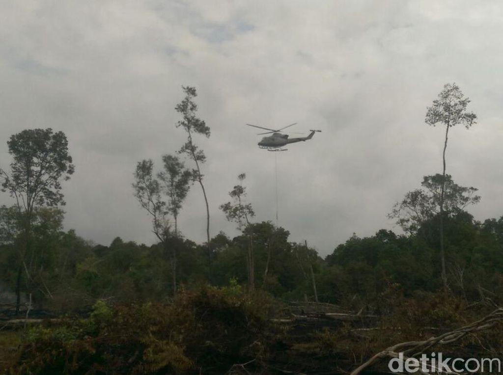 Kebakaran Lahan di Riau, Titik Panas Tersebar di Sejumlah Lokasi
