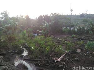 Gagal Panen Akibat Banjir, Petani di Garut Merugi Hingga Rp 1 M