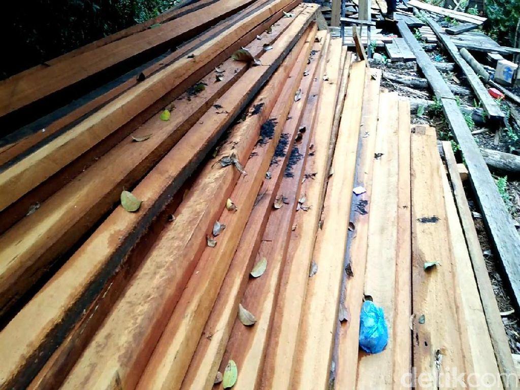 KLHK Desak PN Pekanbaru Eksekusi Rp 16 Triliun Si Perusak Hutan