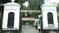 Kebun Raya Bogor, Tempat Wisata Berusia 204 Tahun di Bogor