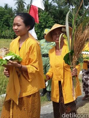 Wiwitan, Upacara Panen Padi di Yogyakarta yang Nyaris Punah