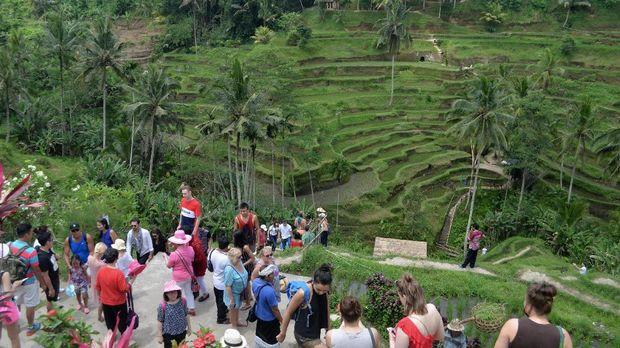 Wisatawan menikmati pemandangan terasering sawah berundak di kawasan Ceking, Tegalalang, Gianyar, Bali, Selasa (7/3). Wisata pedesaan dengan menyusuri persawahan dan mengamati sistem irigasi subak di kawasan tersebut merupakan salah satu potensi wisata yang diminati wisatawan mancanegara di Pulau Dewata. ANTARA FOTO/Fikri Yusuf/ama/17
