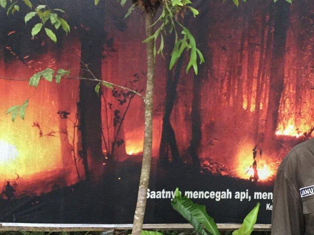 Bertemu Januminro, Pejuang Dayak yang Mengelola Hutan Tahan Api
