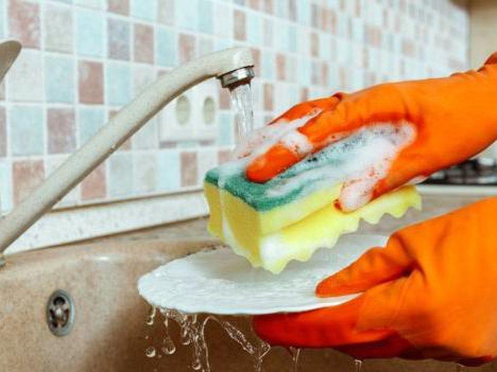 Kapan Waktu Ideal Mengganti Spons di Dapur?