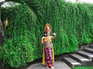Tempat Pramugari Raja Salman Berpakaian Adat Bali Ternyata...