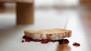 Kata Ilmuwan Makanan Jatuh Belum 5 Detik Memang Aman Dimakan