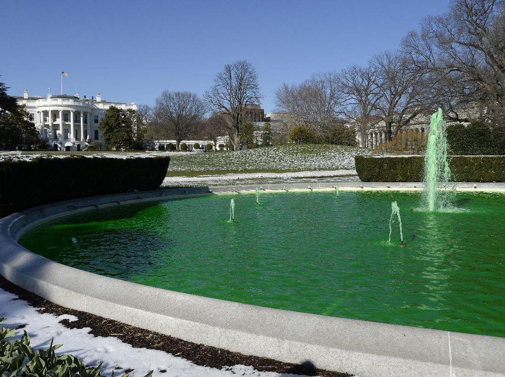 Kolam di Gedung Putih Berubah Warna Menjadi Hijau