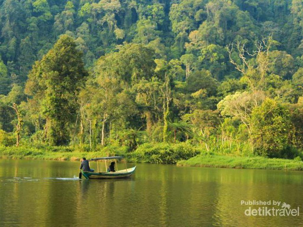 TN Gunung Gede Pangrango, Oasis di Tengah Hiruk Pikuk Perkotaan